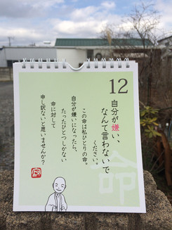 20160312124333.jpg