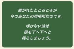 20160814184446.jpg